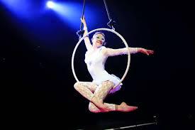 Avez-vous pensé à des acrobates de cirque pour l'animation de votre soirée ?